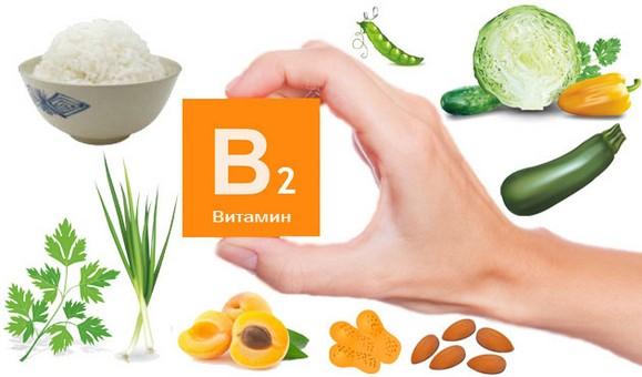 Витамин В2 рибофлавин в каких продуктах содержится