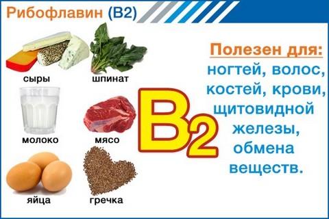 Витамин В2 рибофлавин для чего полезен