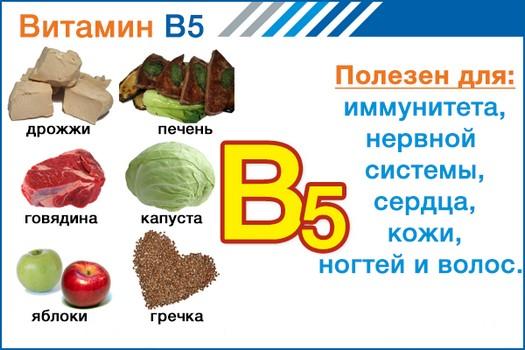 Витамин В5 (пантотеновая кислота) для чего полезен