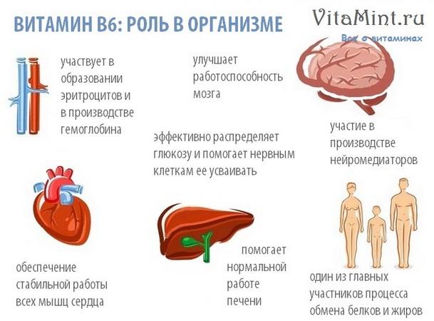 Витамин В6 (пиридоксин) роль в организме