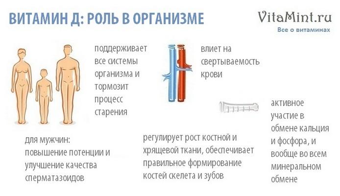 Витамин Д кальциферол роль в организме